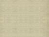 alternating-stripe-beige (DP)