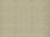 alternating-stripe-ivory (DP)