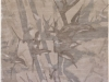 bamboo-grey (DP)